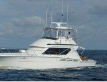 50 Hatteras Convertible Yacht