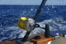 big game fishing los suenos resort